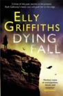 Image for Dying fall