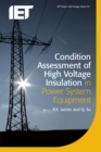 Image for Condition assessment of high voltage insulation in power system equipment