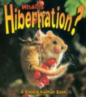 Image for What is Hibernation