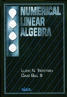Image for Numerical Linear Algebra