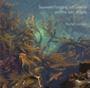 Image for Seaweed foraging in Cornwall and the Isles of Scilly