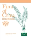 Image for Flora of China Illustrations, Volume 2-3 - Polypodiaceae through Lycopodiaceae