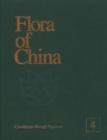 Image for Flora of China, Volume 4 - Cycadaceae through Fagaceae