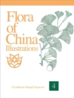 Image for Flora of China Illustrations, Volume 4 - Cycadaceae through Fagaceae