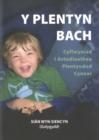 Image for Y plentyn bach  : cyflwyniad i astudiaethau plentyndod cynnar