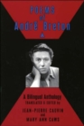 Image for Poems of Andre Breton : A Bilingual Anthology