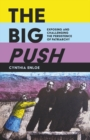 Image for The big push  : exposing and challenging sustainable patriarchy