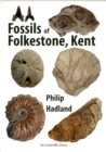 Image for Fossils of Folkestone, Kent