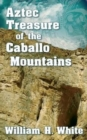 Image for Aztec Treasure of the Caballo Mountains