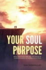 Image for Your Soul Purpose : Reincarnation and the Spectrum of Consciousness in Human Evolution