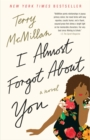 Image for I almost forgot about you  : a novel