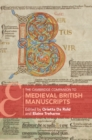 Image for The Cambridge companion to medieval British manuscripts