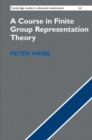 Image for A course in finite group representation theory