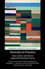 Image for Diversity in practice  : race, gender, and class in legal and professional careers