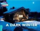 Image for A dark winter