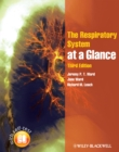 Image for The respiratory system at a glance