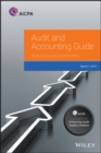 Image for Audit and Accounting Guide: State and Local Governments 2019