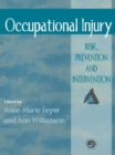 Image for Occupational injury: risk, prevention and intervention