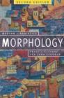 Image for Morphology: Palgrave Modern Linguistics