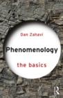 Image for Phenomenology  : the basics