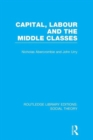 Image for Capital, labour and the middle classes