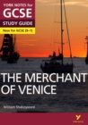 Image for The merchant of Venice  : AQA practice tests