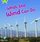 Image for What the wind can do