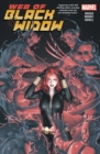 Image for Web of Black Widow