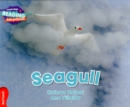 Image for Seagull