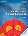 Image for Cambridge IGCSE (R) Mandarin as a Foreign Language Workbook