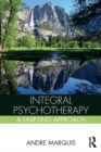 Image for Integral psychotherapy: a unifying approach