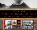 Image for Bodies from the ash  : life and death in ancient Pompeii