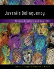 Image for Juvenile Delinquency : Theory, Practice, and Law