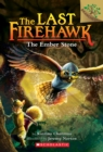 Image for The Ember Stone: A Branches Book (The Last Firehawk #1)