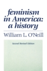 Image for Feminism in America: a history