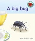 Image for A big bug
