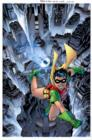 Image for Robin, the Boy Wonder  : a celebration of 75 years