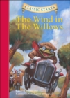 Image for The wind in the willows