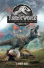 Image for Jurassic World - fallen kingdom  : a junior novel