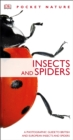 Image for Insects and spiders