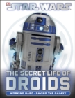 Image for The secret life of droids