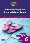Image for Assessing the key objectives 6