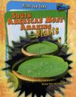 Image for South America's most amazing plants