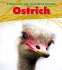 Image for Ostrich