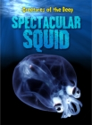 Image for Spectacular squid