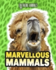 Image for Marvellous mammals