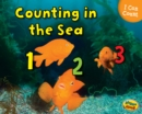 Image for Counting in the sea
