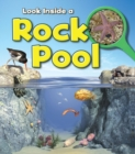Image for Look inside a rock pool