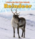 Image for Reindeer