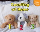 Image for Counting at home